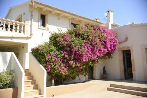 ländlichen Urlaub auf Mallorca, rural holidays in Majorca, vacances rurals a Mallorca, vacaciones rurales en Mallorca