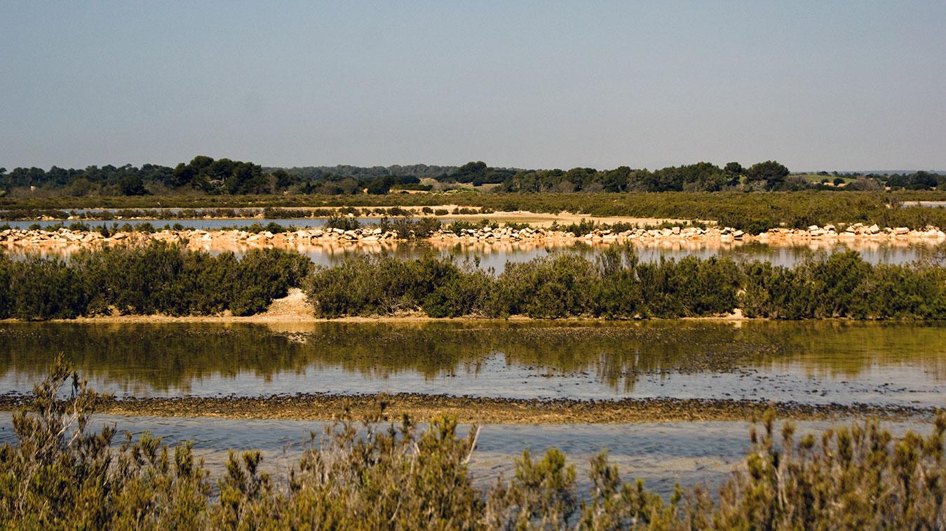 Naturpark von Es Trenc Salobrar, Es Trenc-Salobrar Natural Park, El Parc Natural d'Es Trenc-Salobrar, El Parque Natural de Es Trenc Salobrar